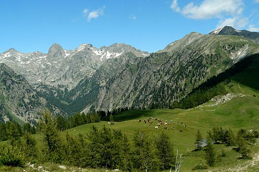 Vue sur le val du Haut Boréon (©:Par Kaelkael (Travail personnel) [CC BY-SA 3.0 (http://creativecommons.org/licenses/by-sa/3.0)], via Wikimedia Commons)